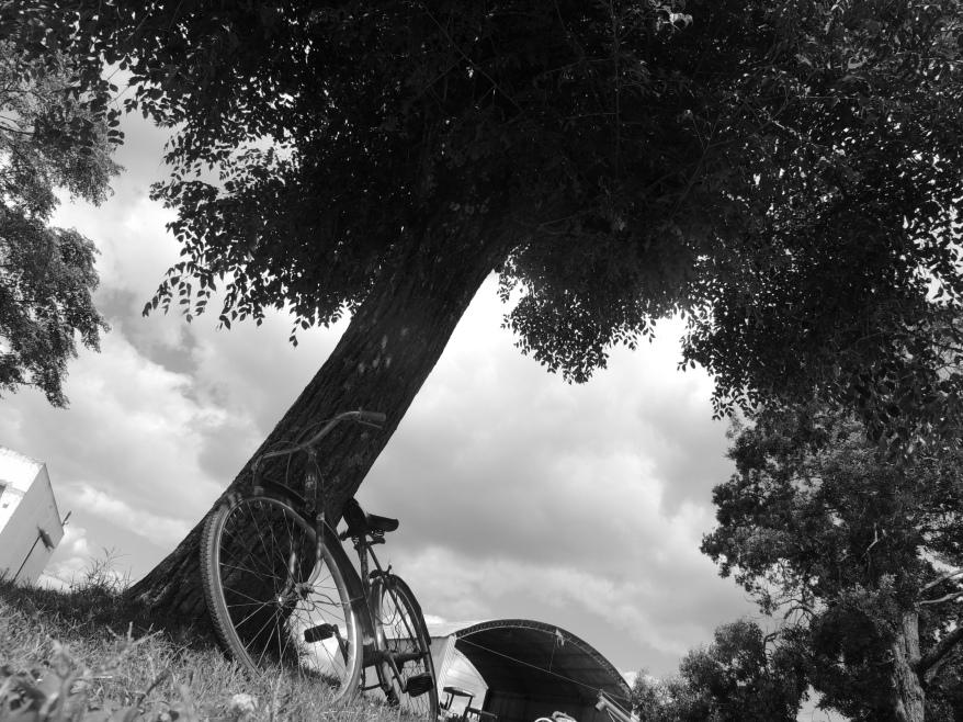 El último ciclista...